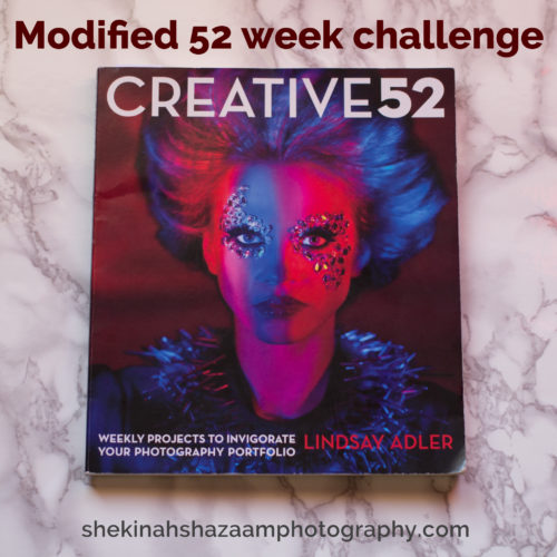 Modified 52 Week Photography Challenge