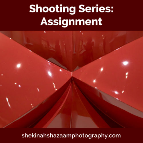 Shooting Series: Assignment
