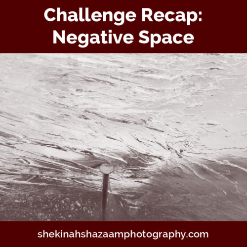 Challenge Recap: Negative Space