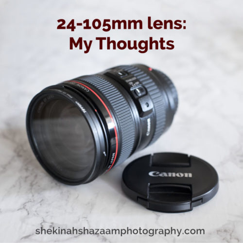 24-105mm lens: my thoughts