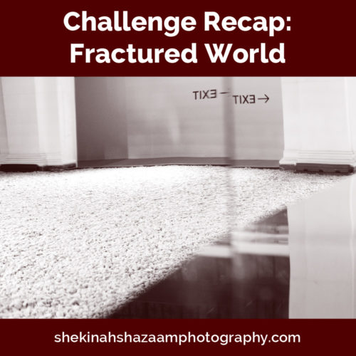 Challenge Recap: Fractured World